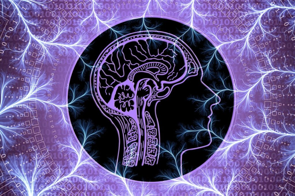 What is Neuro-Linguistic Programming and How Does it Work
